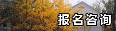 EMBA 招生咨询